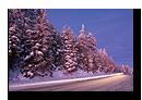 Route enneigée en Fôret Noire en Allemagne