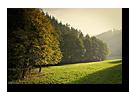 Lueur dor�e d'automne sur la route du Hohwald