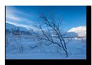 Mefjordvatnan, Senja, Troms, Norv�ge